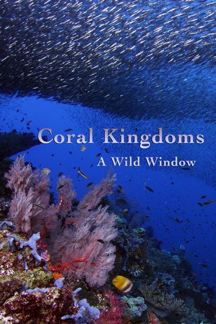 Coral Kingdoms 800x1200